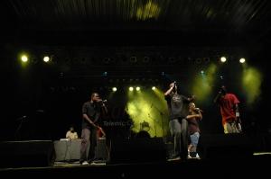 Julgaemnto 2005